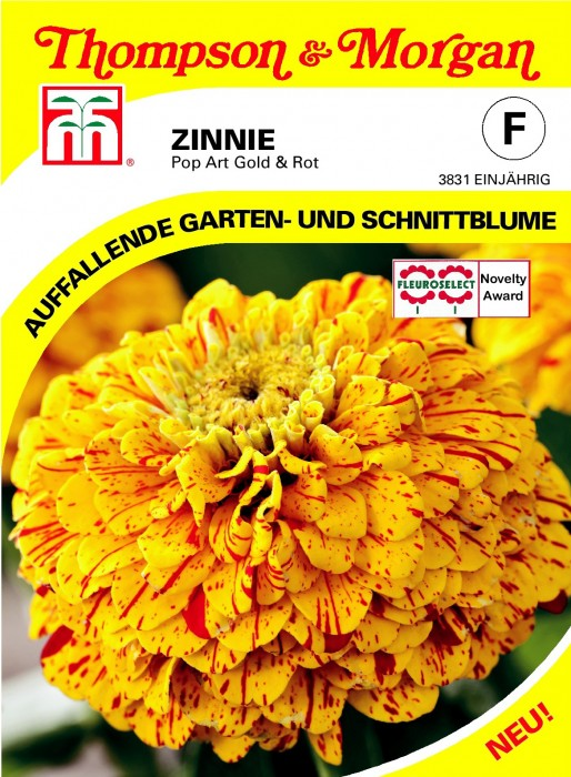 Zinnie (Zinnia elegans) 'Pop Art Gold & Rot'