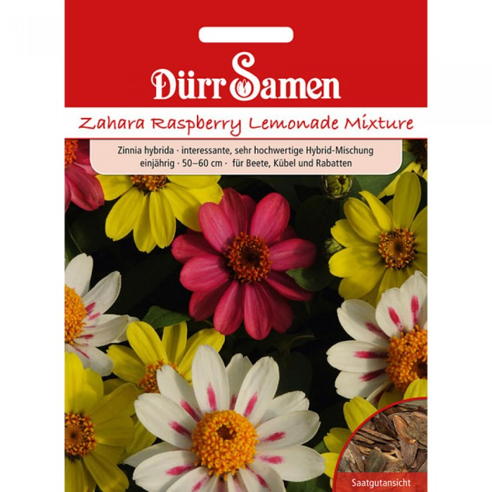Zinnien 'Zahara Raspberry Lemonade'
