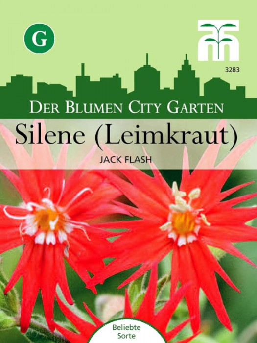 "Silene ""Jack Flash"""