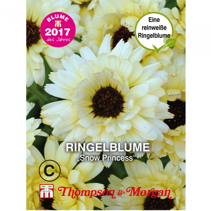 Ringelblume Snow Princess (Calendula officinalis)