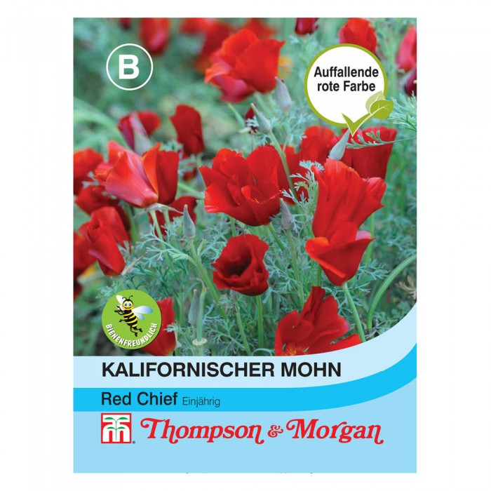 Kalifornischer Mohn Red Chief