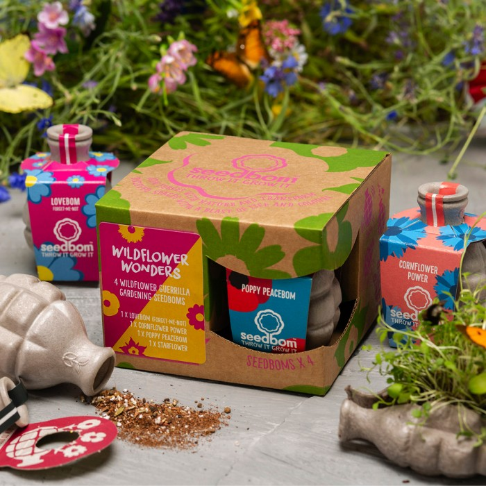 Saatbomben-Geschenkbox Wildflower Wonders