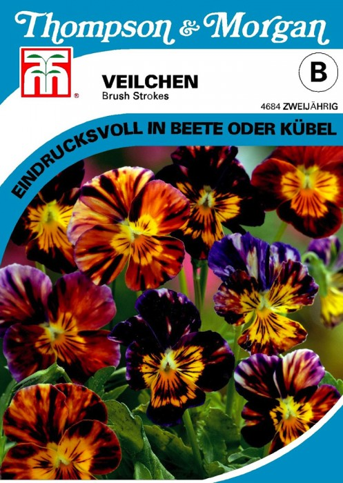 Veilchen (Viola x williamsiana) Brush Strokes