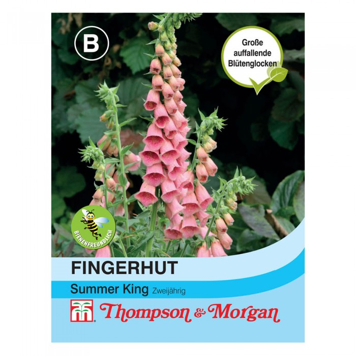Fingerhut Summer King (Digitalis purpurea)