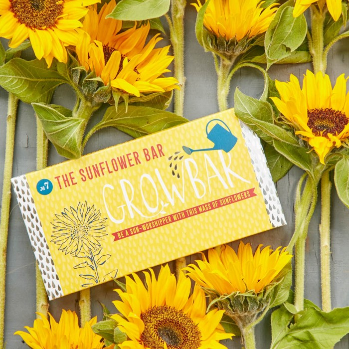The Sunflower Bar von Growbar