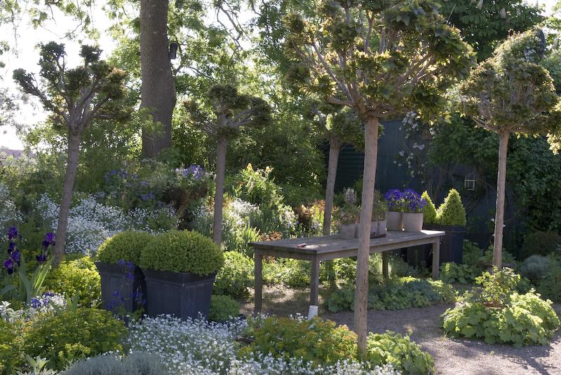 Grafgarten Bilder ~ Kreative Bilder Für Zu Hause Design-Inspiration