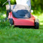 Wer seinen Rasen liebt, der schiebt den Mäher; und zwar regelmäßig 1 x pro Woche nach der erfolgreichen Frühjahrskur.