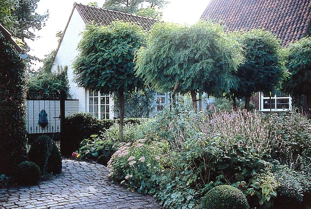 Vorg rten der erste eindruck z hlt gartenzauber - Vorgarten eingangsbereich ...