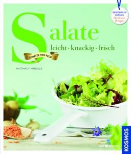 13131-2_Salate