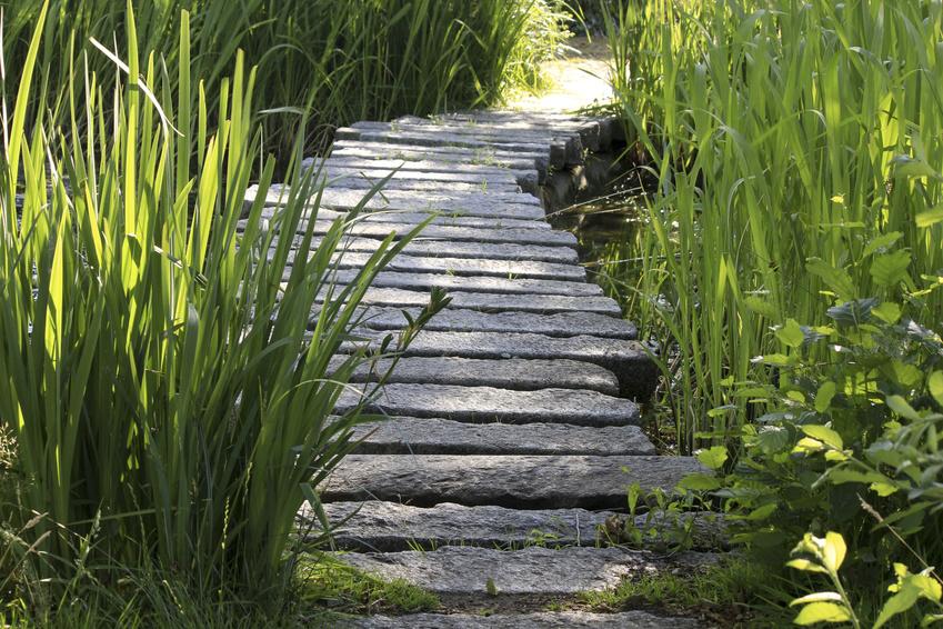 Pumpe Garten mit perfekt design für ihr haus design ideen