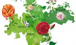 Rosen im Norden