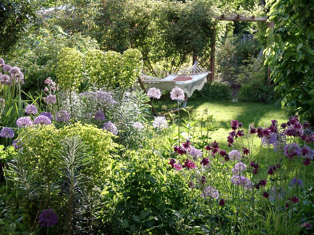 Wolfsmilch vielfalt f r den garten gartenzauber - Zimmerpflanzen fur schatten ...