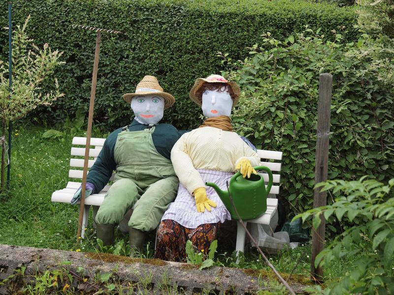 Doppelt hält besser! Das Gärtnerpaar wacht gemeinsam über seine sorgfältig gepflegten Gemüsereihen.