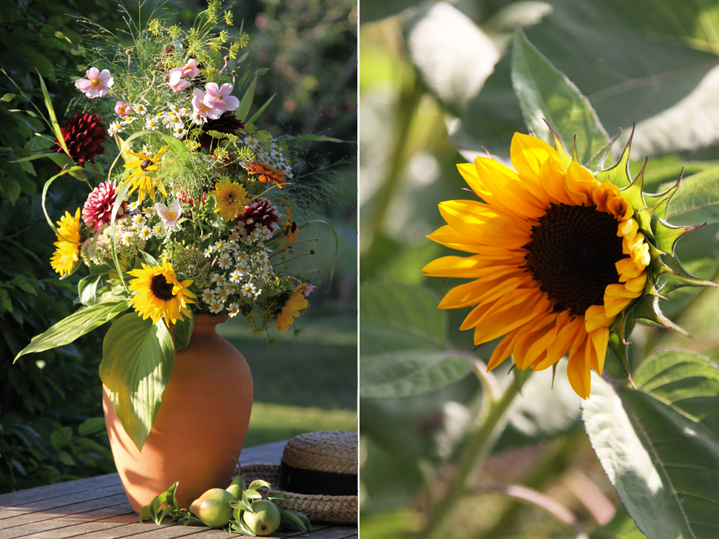 Sonnenblumen, Funkien, Dill, Dahlien, Fetthenne, Gräser und Kamille vom Feld – die ganze Fülle des Sommers für individuelle, üppige Blumensträuße.
