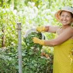 Der ideale Standort für den Kompost sollte bequem mit der Schubkarre zu erreichen, aber auch vor extremer Witterung wie praller Sonne oder rauem Wind geschützt sein.