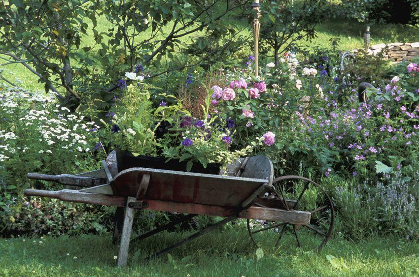 Cottage Garten Gartenzauber