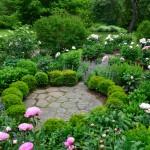 Cottage-gärten - Gartenzauber Englische Grten Gestalten