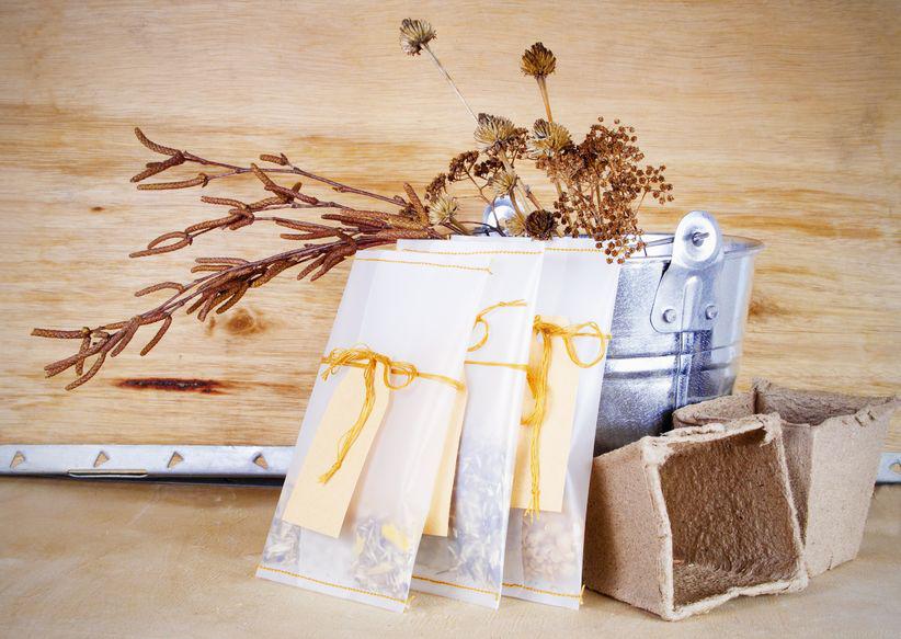 Sammelsurium fürs Samensammeln. Kleine Helfer wie Töpfe oder Körbe, Pergamenttütchen, Bänder und Etiketten gehören zur Grundausstattung.