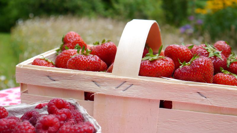 Erdbeer-Himmbeer-Konfituere1