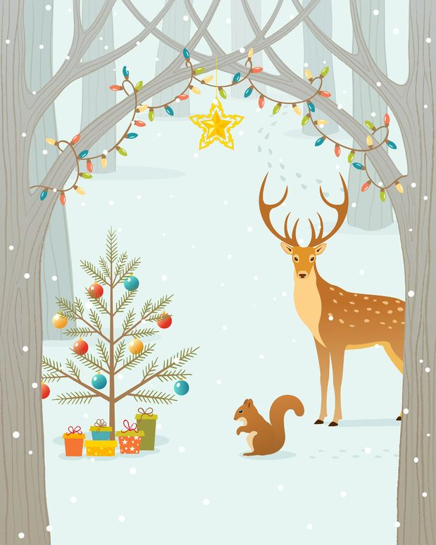 die geschichte des weihnachtsbaumes gartenzauber. Black Bedroom Furniture Sets. Home Design Ideas