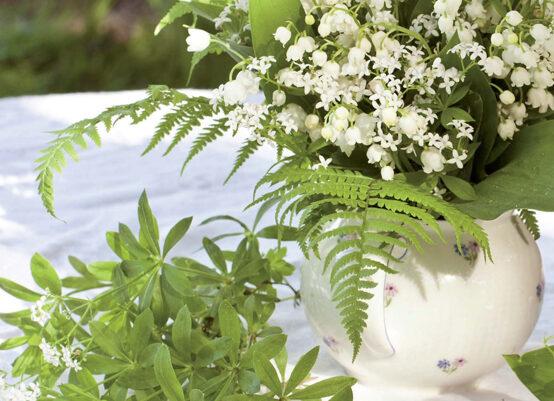 Weißer Blütenduft