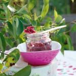 Rosen-Felsenbirnen-Marmelade