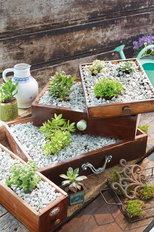 pflanzen f r schattige pl tze im garten pflanzen f r schattige pl tze pflanzen f r schattige. Black Bedroom Furniture Sets. Home Design Ideas