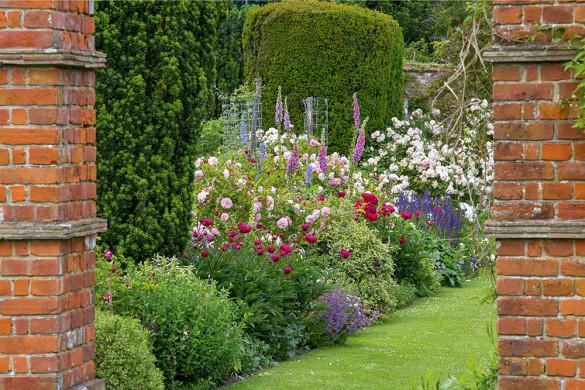 Strauchrosen, Fingerhüte und Pfingstrosen bestim- men das frühsommerliche Gartenbild.