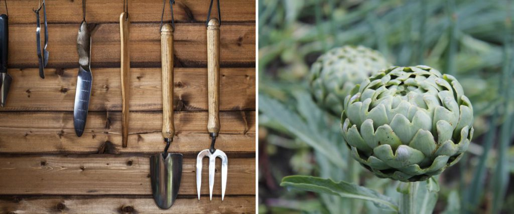 Gartentipps Im Januar: Nutzgarten - Gartenzauber Garten Januar Was Ziergarten Tun