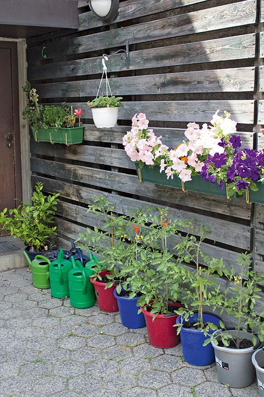 Die Grune Mitte Der Innenhof Gartenzauber