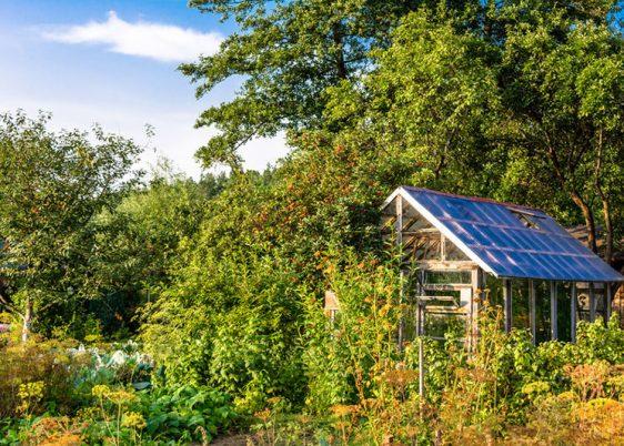 Greenhouse in the garden, farming in the summer vegetable garden